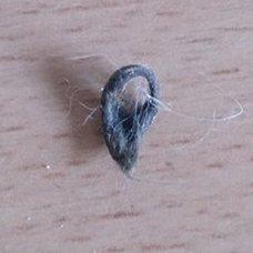 pierśceń z futra