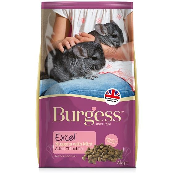 BurgesExcelChinchilla